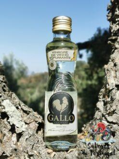 Gallo Vinagre Espumante | SaboresDePortugal.nl