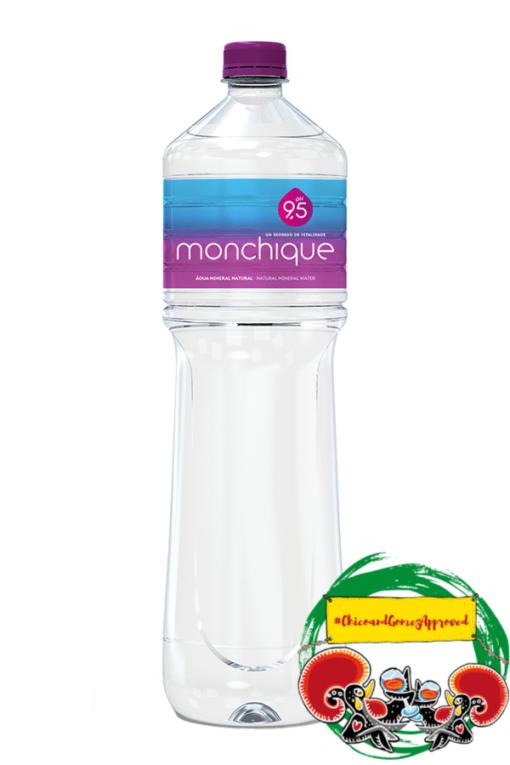 Água de Monchique 1,5L | SaboresDePortugal.nl
