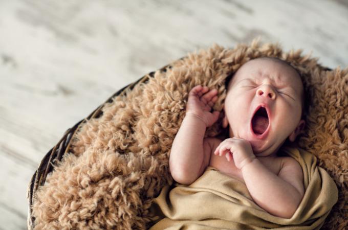 Hoera, onze Zoon is geboren!   SaboresDePortugal.nl
